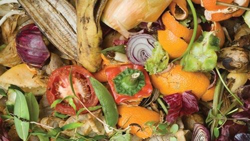 rifiuti-alimentari-energia